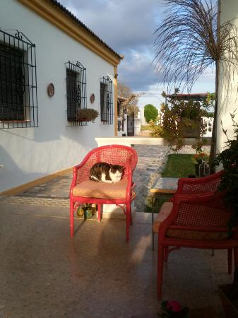 Finca El Juncal: Zona de la entrada