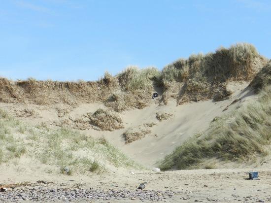 Gower Peninsula: Rossili Beach