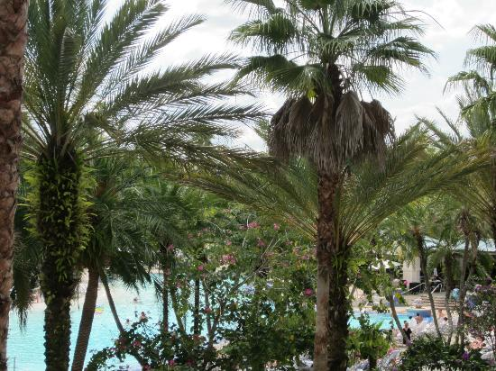 Palm Hard Rock Hotel Orlando