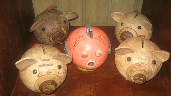 Caribbean Trading Company Store: piggies