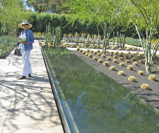 Sunnylands reflecting pool