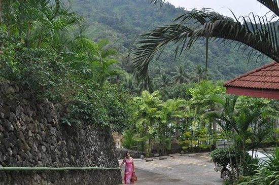 Palm Grove Hot Springs and Mountain Resort: Natural beauty of the place.....