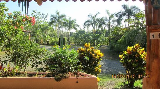 Las Islas Lodge: Le parc de l'hôtel
