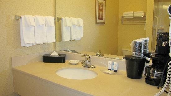 Fairfield Inn & Suites Burlington : nice bathroom