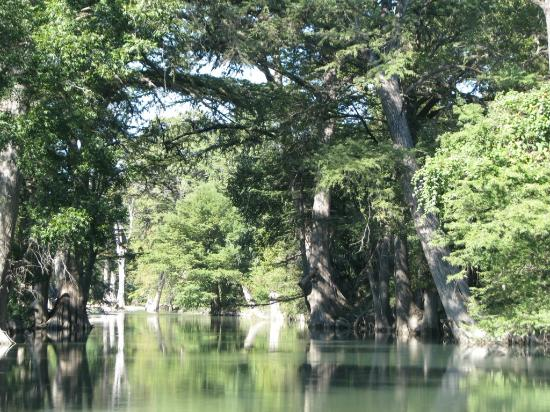 Haven River Inn: The Guadalupe River flows through the property