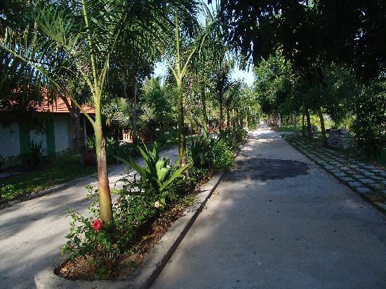 Dat Lanh Resort: Главная улица в отеле