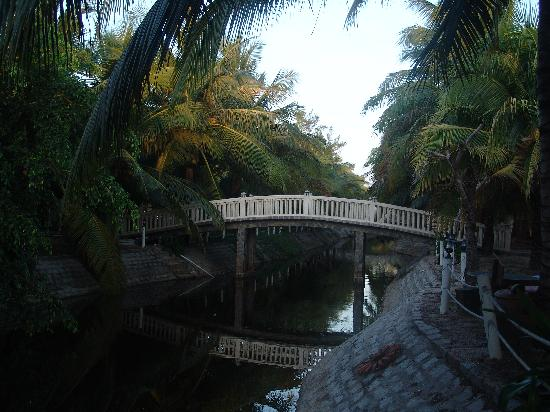 Dat Lanh Resort : Переход от жилой зоны к бассейну и в ресторан