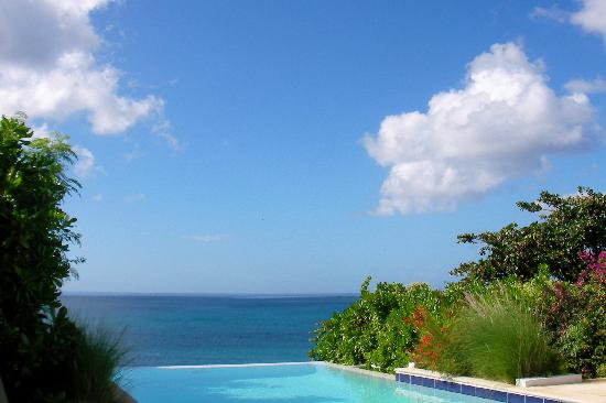 The Villas at Serenity Bay : The infinity pool is perfect