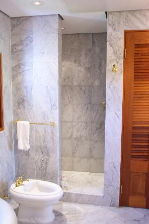 The Villas at Serenity Bay: Master bath shower features a rainfall shower head