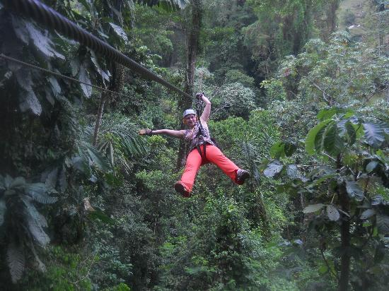 ATEC - Talamancan Association of Ecotourism and Conservation Day Tours: wheeeeee!!