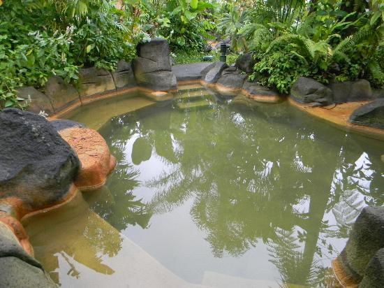 Arenal Paraiso Hotel Resort & Spa: Hot springs...aaaahhh