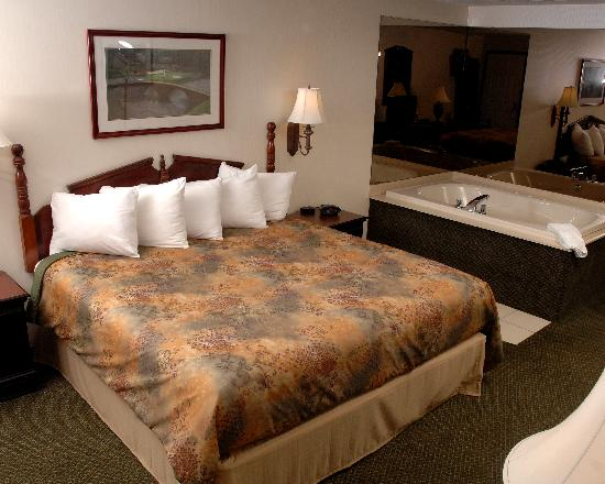 Best Western Of Harbor Springs: King bed with Jetted Tub