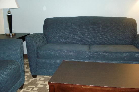 Holiday Inn Express & Suites Atlanta Airport West - Camp Creek: Sofa
