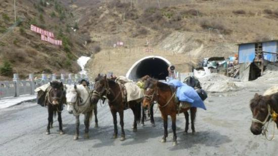 Songpan horse trek: At the almost finished tunnel