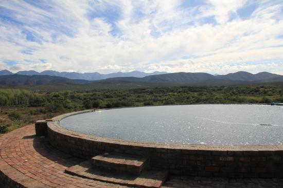 Rietfontein Ostrich Palace: a perfect pool