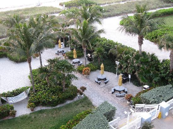 Solara Surfside Resort: Pool deck, lawn and bbq grills, so comfy and fun!