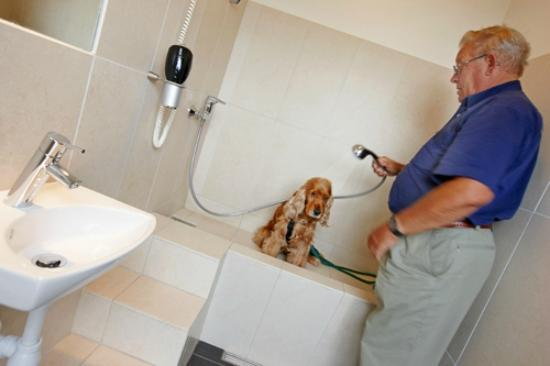 Henne Strand Camping : Bathrooms for dogs