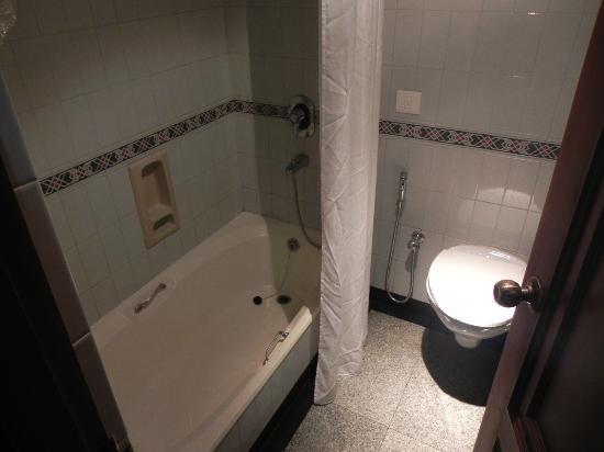 Hotel Elite Palazzo : wow a bathtub also