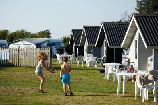 Henne Strand Camping : Cabins