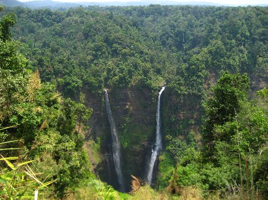 Pakse, لاوس: Tad Fane Waterfall, Bolaven Plateau