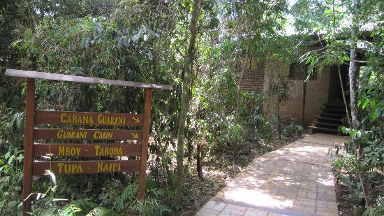 La Aldea de la Selva Lodge: La Aldea de la Selva grounds