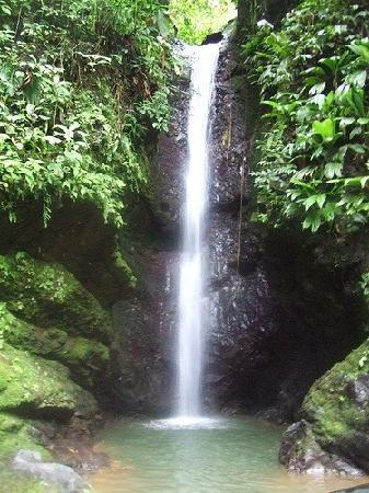 Pacuare Lodge: waterfall near lodge