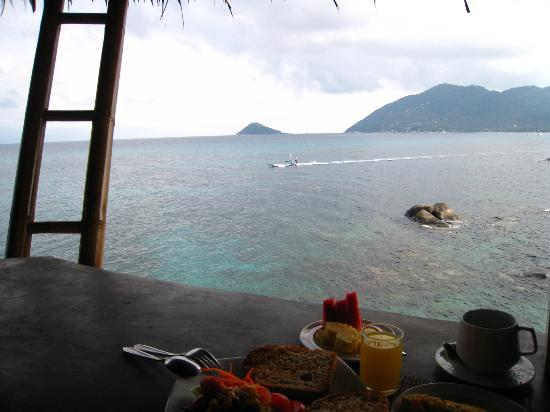 Koh Tao Bamboo Huts: breakfast view