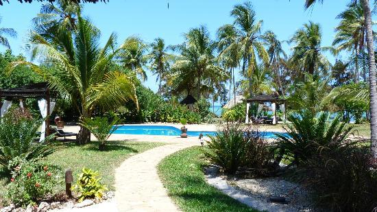 Anna of Zanzibar: piscine