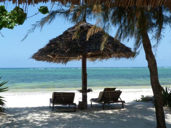 Anna of Zanzibar : parasol et transats