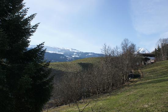 Schweigerhof: Rear view