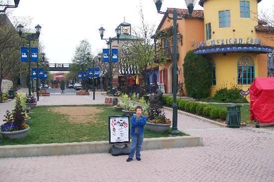 Courtyard Gaithersburg Washingtonian Center: main shopping area with Target at end and Khols around corner