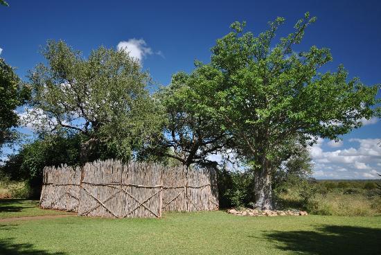 Mohlabetsi Safari Lodge: Mohlabetsi Lodge