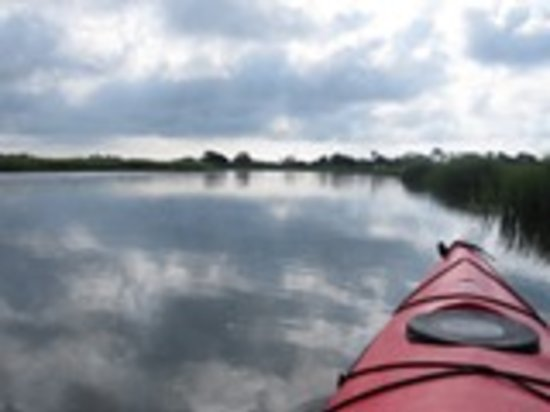 The Sail Shop Tours: Paddling Bald Head Creek on a Summer Morning