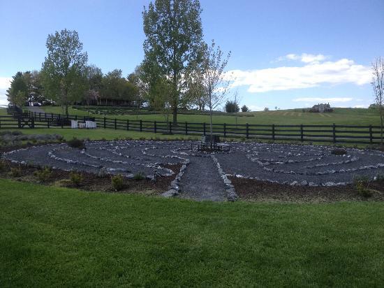 White Oak Lavender Farm: White Oak Garden