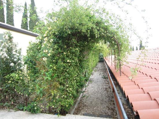 Corte San Mattia - Agriturismo Verona: Pathway to the back door of our room