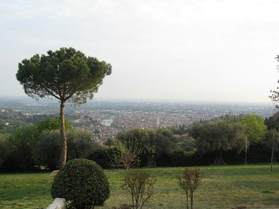 أجريتورزمو سان ماتايا: View