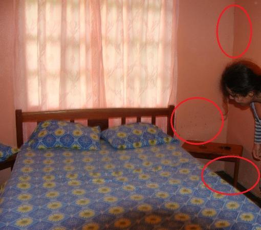 """Kiri Mountain Lodge: Muchas manchas de humedad y salpicaduras de """"algo"""" oscuro cerca de la cabecera de una de las cam"""