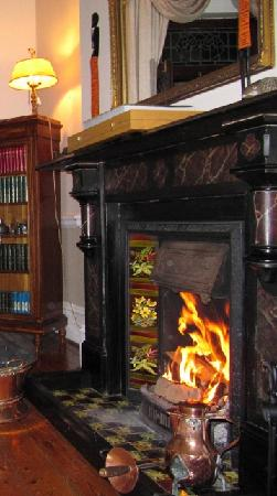 Carmichael Guesthouse: The fireplace for winter