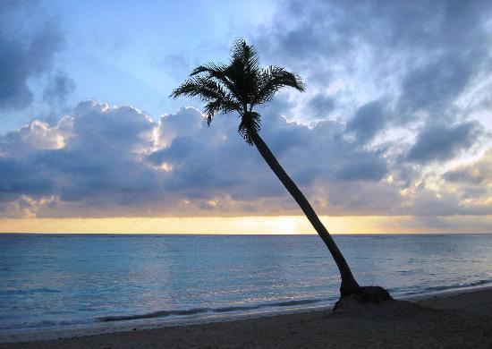 Iberostar Grand Bavaro: Beautiful beach sunrise at the resort
