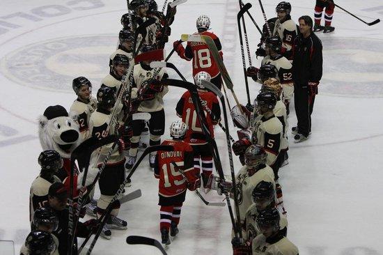 Quebec City Remparts Hockey Foto