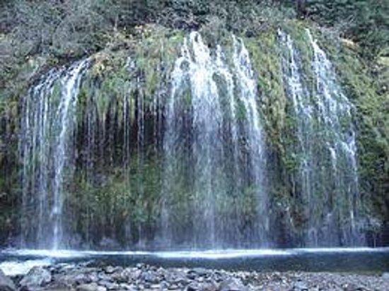 Foto de Mossbrae Falls