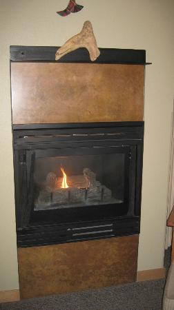 "Friday Harbor House: I liked the ""mantle"" over the gas fireplace"