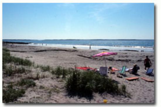 Summerville Beach Provincial Park Bild