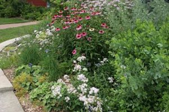Bickelhaupt Arboretum