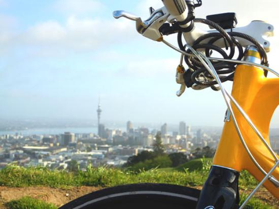 Bike Auckland with Mike Day Tours Photo