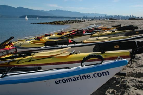 Ecomarine Paddlesport Centres Photo