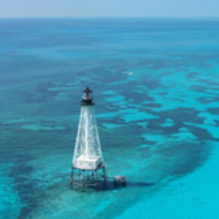 Bay and Reef Company Aufnahme