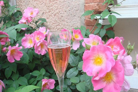 Champagne Thierry Rodez