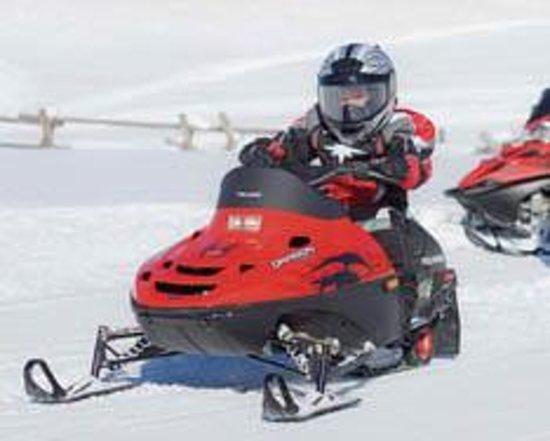 Colorado Adventure Park: Snowscoots