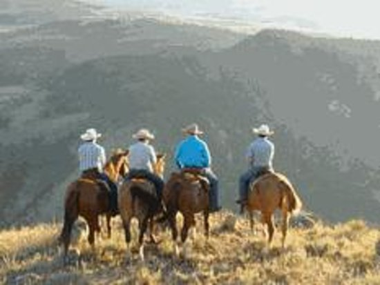 Flying Pig Adventure Company: Horse rides overlooking Yellowstone National Park